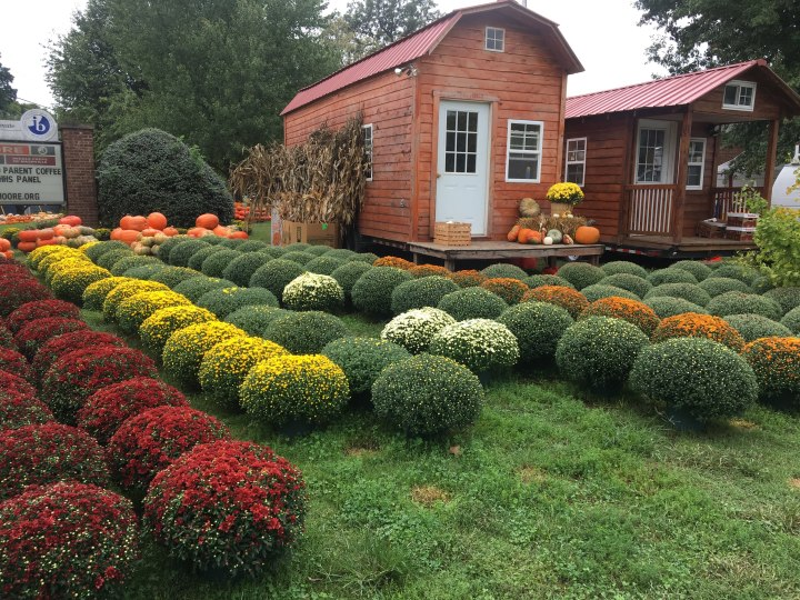 Fall Curb Appeal!